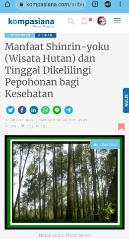 Artikel bertema lingkungan karya Ari Budiyanti tahun 2020. Dokpri