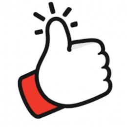 Like (icon-icons.com)