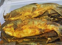 Ilustrasi ikan pindang adalah dokumen Budi Susilo