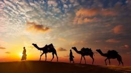 Peradaban Bangsa Arab Pra Islam. | freepik