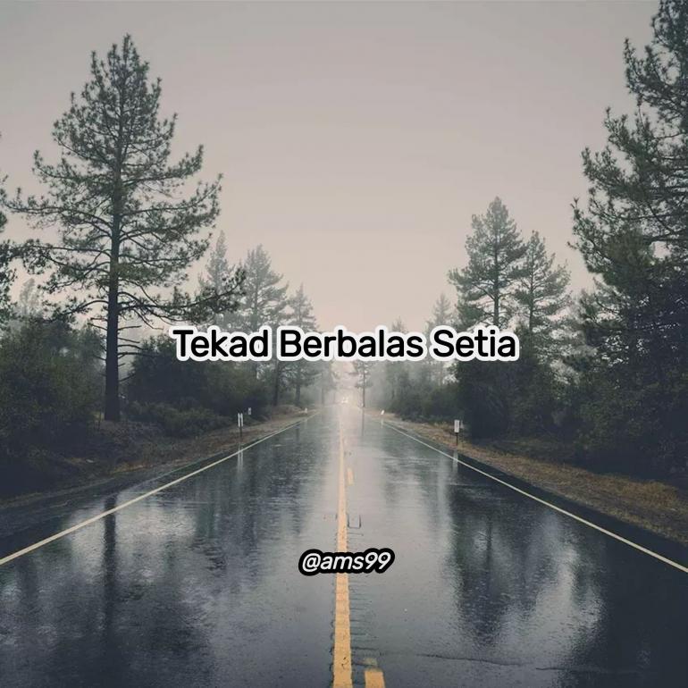 Puisi Tekad Berbalas Setia (Dokpri @ams99_By. Text On Photo)