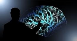 Ilustrasi memahami otak manusia - https://hielosmendez.es/