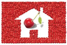 Ilustrasi cherry picking: businesstoday.in/Tripti Kedia