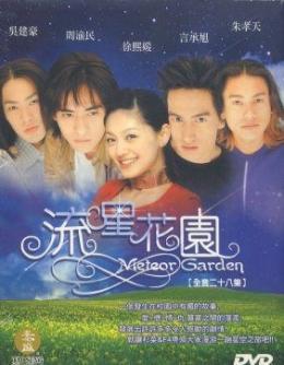 Cover DVD Meteor Garden   Sumber : luomujie.blogspot.com