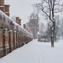 kondisi cuaca di Rusia ketika sedang memasuki Musim dingin , Credit, Unsplash.com/Natalia Ventskovskaya