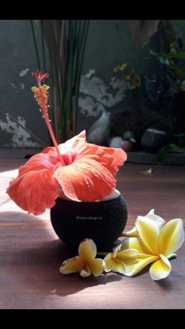 Untuk ditaruh dalam vas juga cantik loh.   Foto: Wahyu Sapta.