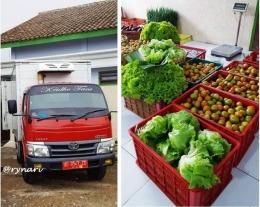 Rumah kemas-mobil berpendingin penjamin kesegaran sayur produksi Kridho Tani   dokpri Rynari