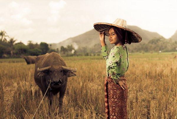 Menjadi petani di usia muda, pilihan yang tak mudah (Sumber: pixabay.com/ihsanadity)