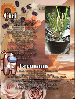 Laporan siswa tentang ciri dan manfaat tanaman, dokumentasi pribadi
