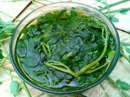 Sayur daun kelor (foto dari yenihelda.com)