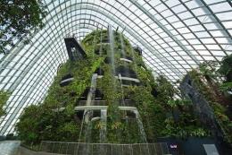 Air terjun indoortertinggi di dunia milik Singapura. Source: jalanjalansingapura.com