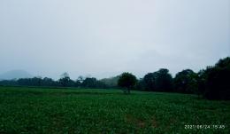 Dokpri. Suasana saat hujan mulai redah