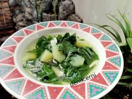 Sayur bening daun katuk (dokpri)