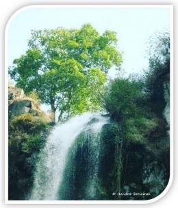 Air dan pohon; sama-sama saling membutuhkan (foto: dok. pribadi)
