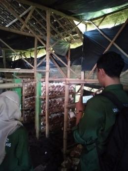 Gambar 2. Tim Mahasiswa KKN sedang mengunjungi salah satu rumah UMKM budidaya jamur.