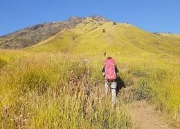 Sabana Gunung Sumbing jalur Bowongso (dokpri)