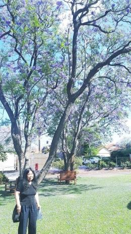 berfoto dengan latar belakang pohon Jakaranda(dok pribadi)