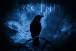 Ilustrasi burung oleh DesignerTalk dari pixabay.com