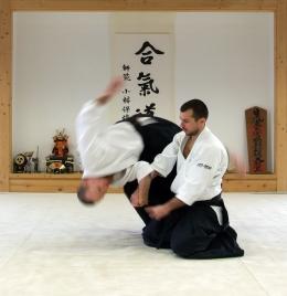 Ilustrasi latihan bela diri Aikido. Sumber gambar: Magyar Balázs
