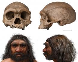 Tengkorak dan hasil rekonstruksi wajah Manusia Naga. Sumber: Wei Gao / Chuang Zhao