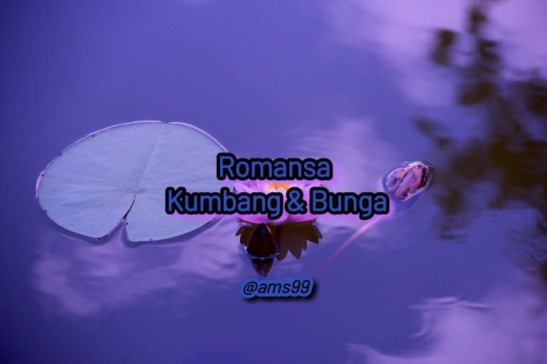 Puisi Romansa Kumbang dan Bunga