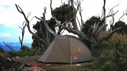 Satu-satunya tenda di puncak hutan mati (Dokpri)