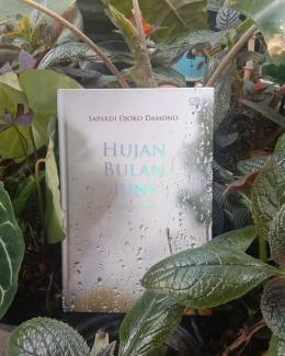 Puisi Hakikat Hujan Bulan Juni (Dokpri @ams99_By. Text On Photo)