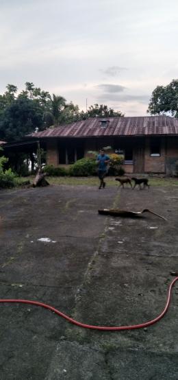 Lari sore ditemani 2 anjing kesayangan [Dok. Pribadi]