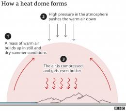 Fenomena Heat Dome membuat bumi makin panas. Sumber: BBC