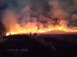 Bahu membahu memadamkan kebakaran padang rumput di kaldera Bromo. Dokpri