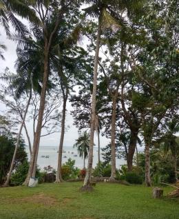 Ilustrasi laut yang terlihat dari taman. (Dokumentasi pribadi)