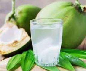 Ilustrasi kelapa muda (dok.sajiansedap.grid.id)
