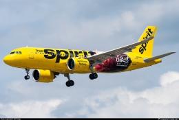 Spirit Airlines, salah satu klien dari Avolon. Sumber: Bill Wang / planespotters.com