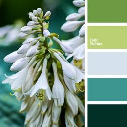 Ilustrasi warna dingin (colorpalettes.net)