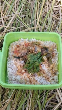 Menu makan siang saat panen padi di sawah (Dokumentasi Pribadi)