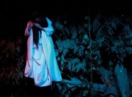 Gambar: Hantu di Pohon waru (sumber: gambarhantublogspot.com)