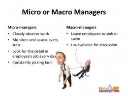 Macro vs Micro Manager. Sumber: www.strategic-change-consultants.com