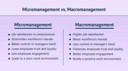 Micromanagement vs Macromanagement. Sumber: ofy.world