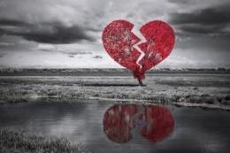 Sumber Foto Shutterstock via kompas.com