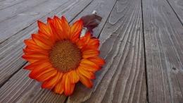 Gambar dari Pixbay