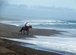 Ilustrasi gadis menungang kuda di pantai oleh Natalia_Kollegova dari pixabay.com