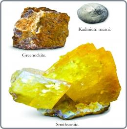 Kadmium murni dan mineral Greenockite dan Smithsonite. Diadaptasi dari: buku Periodic Table Book - A Visual Encyclopedia, hlm. 86.