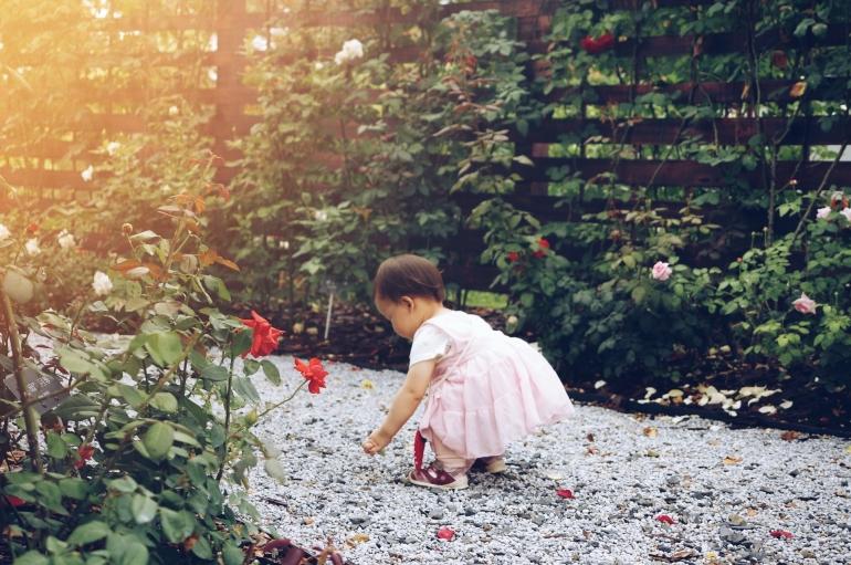 ilustrasi bermain di taman bunga. (sumber: unsplash.com/@alvannee)
