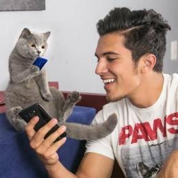 Cerita kucing bernama Pangeran Michael ini banyak fansnya   sumber gambar: Aaronsanimals.com