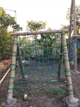 Panjat Tali (Foto oleh : KKN UM 2021 Desa Pandanmulyo)
