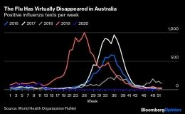 Kasus flu di Australia menurun drastis selama pandemi Covid-19 - bloomberg.com