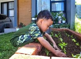 Ilustrasi Berkebun di Rumah Bersama Anak. Sumber: dokumentasi pribadi