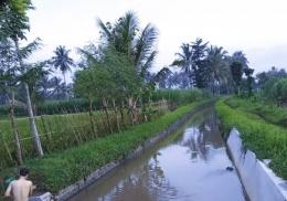 Anak sungai Kali Amprong Desa Malangsuko. (dokumen pribadi)
