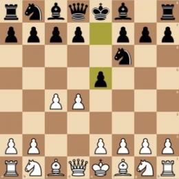 https://chesspathways.com/chess-openings/queens-pawn-opening/budapest-gambit/
