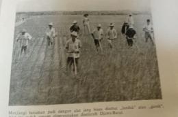 Ilustrasi-Foto: Buku Propinsi Jawa Barat, 1953